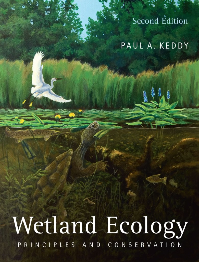 Wetland Ecology book cover -- order this book about the ecology of wetlands from Amazon or Cambridge.