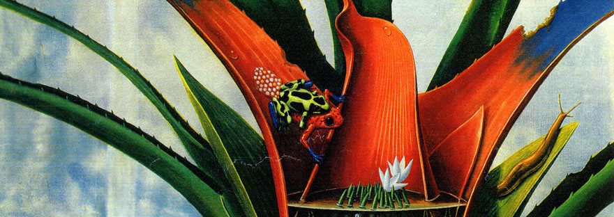 Illustration featuring frogs